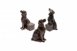 Potty Feet Bronze Springer Spaniel (3)